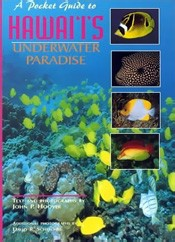 A Pocket guide to Hawai'i's Underwater Paradise