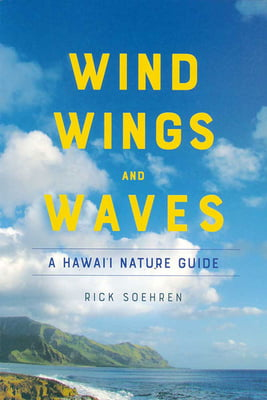 Wind, Wings and Waves