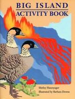 Big Island Activity Book