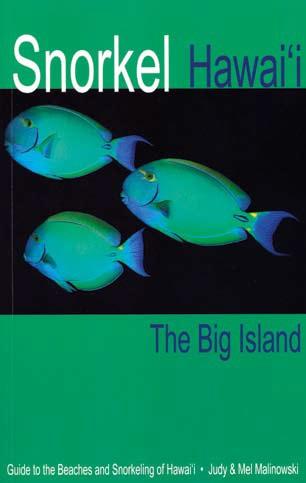 big book 4th edition pdf