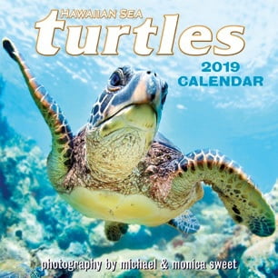 "Hawaiian Sea Turtles - Deluxe 11"" x 11"" Wall Calendars"